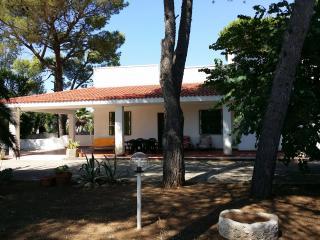 casa vacanze , Villa 6/8 posti letto , autonoma, Manduria