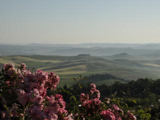Fonte Aulente Montalcino