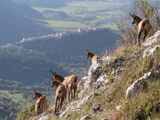 Casa in montagna nel Parco Nazionale dell'Abruzzo, Pescasseroli