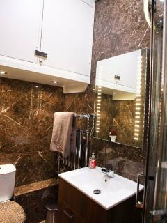 Luxury Shower room with LED Mirror