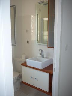 La salle de bains avec douche et lave linge