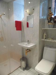 Downstairs Shower Room with enclosed shower, wc and toilet.  Towels provided (not pool towels)