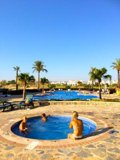 Large Swimming pool with jacuzzi just 40 meters from the terrace