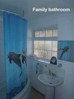 Shower with dolphins.