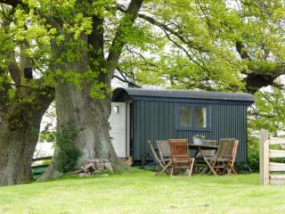 the shepherd's hut nestling below ancient oaks