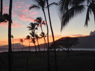 Stunning View, Oceanfront **ASK ABOUT SPECIALS**