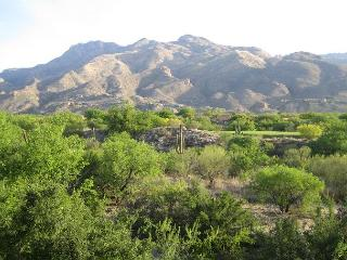 Charming and cozy 1 Bedroom/Den Breath taking Mountain Views., Tucson