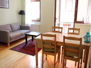Newly renovated apartment great location