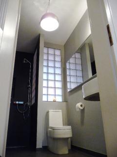 completely remodeled bathroom, glass brick details
