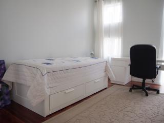 Trundle bed (retracted) and desk for professionals