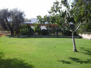Appartamento in villa a 50 metri dalla spiaggia, Mattinata