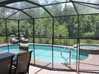 Pool area with safety net (easily attachable)