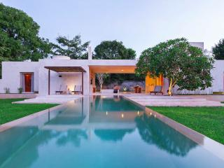 Stunning modern home base for Yucatan exploration.