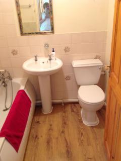 Ground floor bathroom/shower and toilet