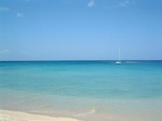 West Coast apartment walking distance to beautiful, Holetown