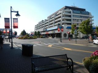 Sidney Beacon Avenue Condo