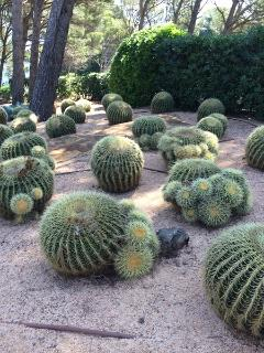 Botanical Gardens of Cap Roig