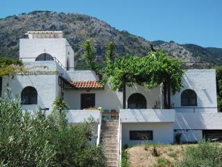 THE GREEN ECO HOUSE, Salakos
