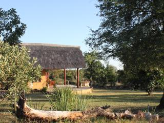 Umoja, view to part of the garden. Only 100 mtrs from the Kruger fence.