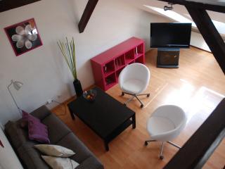 Sunny Apartment Under Roof - 75m², Praag