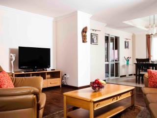 3 Bedroom Serviced Apartments in Kathmandu