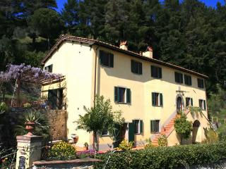 Villa Aquilea (antique villa & pool) Lucca Tuscany