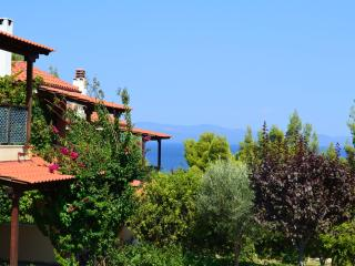 Villa with seaview in Paliouri Chalkidiki