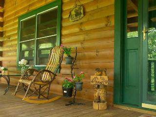 Visit a great family hideaway Close to the Blue Ridge Parkway, Lake Lure, Asheville !!!, Marion
