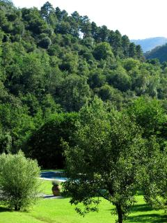 Total privacy - pool and surrounding hillside