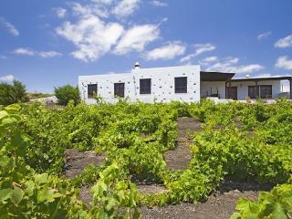 Casa Rural Teseguite - Moscate