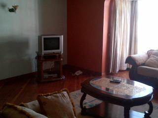Three bedroomed fully furnished aprtment, Nairobi