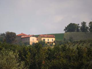 La Famulenta seen over the hazelnut bushes