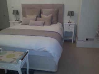Luxury 2 bedrooms garden flat London, Londres