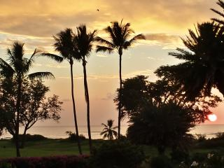 Breathtaking clear ocean view, incredible value, Kihei