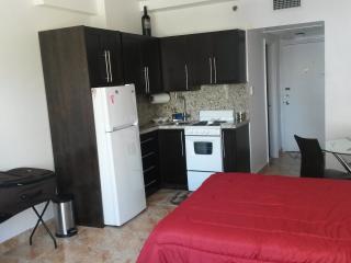 Miami Beachfront Condo+pool+parking+wifi! 625