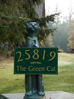 green cat greeter
