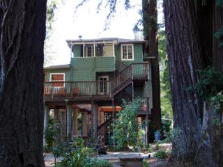 Monte Rio Treehouse, Home amongst Old Growth Redwoods
