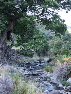 Entorno. Arroyo de la Aldehuela.
