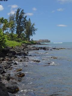 View  of Maui coastline south towards Kaanapali