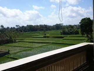 Indra Santi 2 brm house, Eat Pray Love Rice Fields