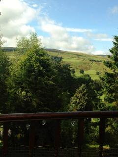 view from the cottage balcony
