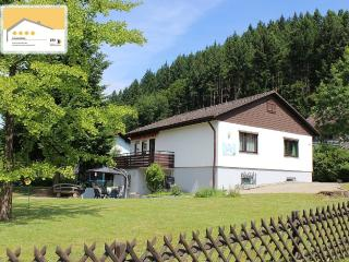 4 STAR APARTMENT INBETWEEN THE BLACK FORREST, Muenstertal
