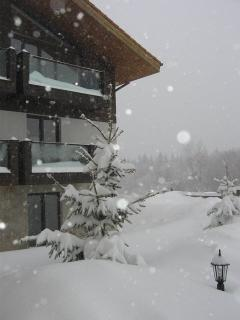 Chalet Sokol and Lots of Snow!!