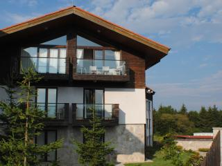 LUXURY SKI CHALET TO RENT IN BOROVETS BULGARIA
