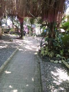 Garden path to beach...