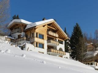 *Great Rates - Please Enquire * Chesa Falcun Luxury Catered Chalet - 6 Bedrooms, Klosters