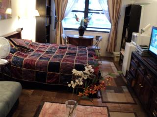 THE SPECTACULAR 2BR GUEST UNIT, Nueva York
