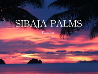 Sibaja Palms Sunset Beach Luxury Villa Special, Surat Thani
