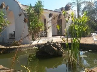 Affitto Villa eTrullo-SALENTO-ZonaGALLIPOLI