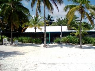Private Oceanfront Villa on 4 mile sand beach, Andros